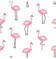 hand drawing print design flamingo pattern vector image vector image