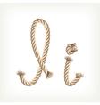 Rope alphabet Letter I vector image