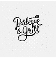 Simple Text Design for Barbecue and Grill Concept vector image vector image