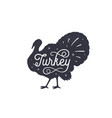 turkey vintage retro print vector image