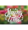 Spring time letteringGreenpink blurred vector image