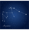 Aquarius constellation vector image
