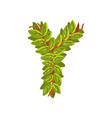 letter y english alphabet made of tree branches vector image