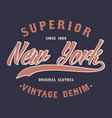 new york superior denim vintage t-shirt graphic vector image vector image
