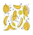 set banana linear icons on white background vector image vector image