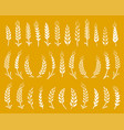 white hand drawn wheat ears icons set vector image