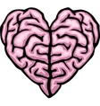 Brain heart vector image vector image