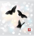 butterflies hand drawn with ink on white glowing vector image vector image
