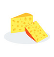 cheese two pieces vector image vector image