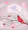 Christmas Snowy Rowan Berries Bird Card vector image