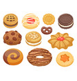 cookie cakes top view sweet homemade vector image vector image