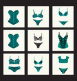 fashion bra sets with different styles of bra and vector image vector image