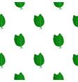 fresh green basil leaves pattern flat vector image vector image