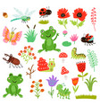 frogs insects and flowers set vector image