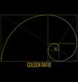 golden ratio vector image vector image