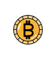 isolated bitcoin design vector image