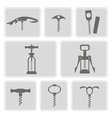 set of monochrome icons with corkscrew vector image