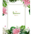 universal invitation congratulation card with vector image vector image