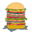 Hamburger with salad funny cartoon vector image