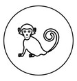 monkey icon in circle outline vector image