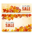 set two autumn sale banners with colorful vector image vector image