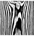 Stripe Wooden Texture vector image vector image