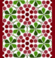 cranberries pattern vector image vector image