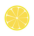 lemone icon citrus refreshing drink vector image vector image
