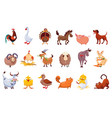 Set farm animals livestock and poultry
