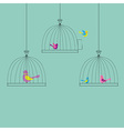 Color Birds vector image vector image