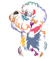 colorful decorative portrait of dandie dinmont vector image vector image
