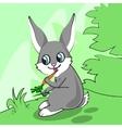 Cute cartoon bunny eats carrot on a meadow vector image vector image
