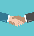two hands close up of handshake flat style vector image vector image