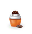 vanilla chocolate cupcake vector image