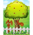 A rabbit and a squirrel playing under the cherry vector image vector image