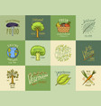 healthy organic food logos set or labels vector image