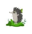 Hedgehod Friendly Forest Animal vector image