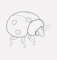 ladybird icon line element of vector image vector image