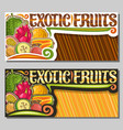 layouts for exotic fruits vector image