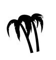 palm trees icon isolated on white background vector image vector image