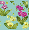 seamless tropical pattern with orchid flowers vector image