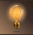 transparent glowing electric light bulb with a vector image vector image