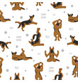yoga dogs poses and exercises german shepherd vector image vector image
