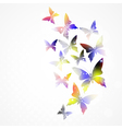 Abstract background with colorful butterfly vector image