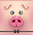 background with 3d funny cartoon pig face vector image vector image
