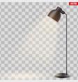 decorative metal floor lamp vector image vector image