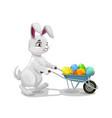 easter holiday bunny with wheelbarrow and eggs vector image