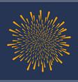 Firework festive explosion