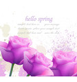 hello spring violet roses and splash vector image vector image