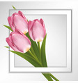 pink tulips paper frame on white background with vector image vector image